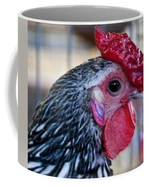 Chicken Coffee Mug featuring the photograph Red Hat Chicken by Douglas Barnett