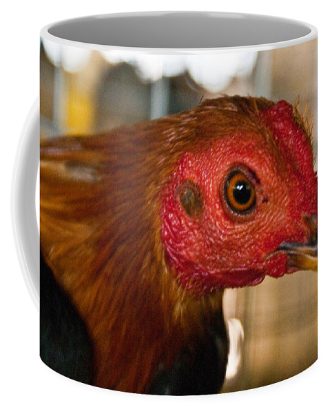 Chicken Coffee Mug featuring the photograph Red Headed Chicken by Douglas Barnett
