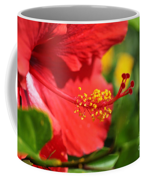 Flowers Coffee Mug featuring the photograph Red Hibiscus and Green by Nadine Rippelmeyer