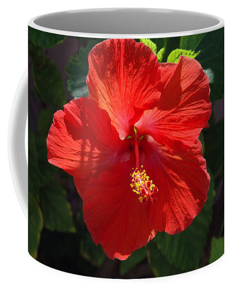 Photography Coffee Mug featuring the photograph Red Hibiscus by Susanne Van Hulst