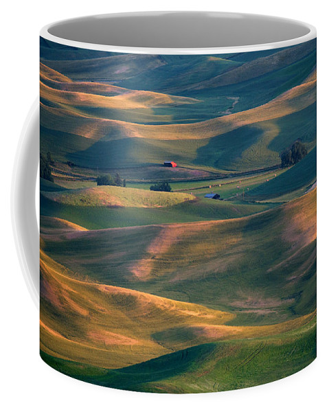 Barn Coffee Mug featuring the photograph Red In A Sea Of Green by Mike Dawson