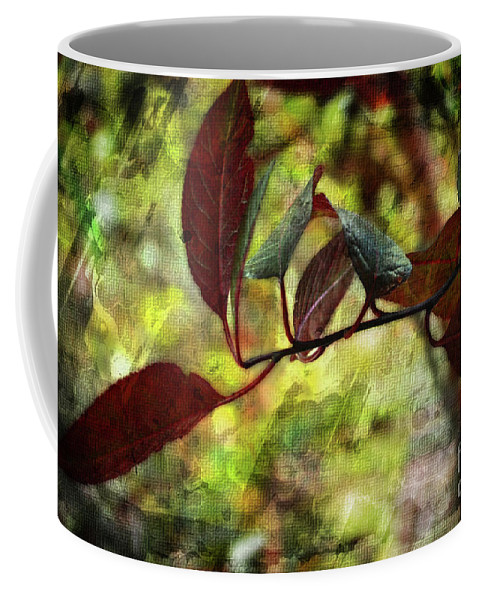 Season Coffee Mug featuring the photograph Red Leaves With Texture by Debbie Portwood
