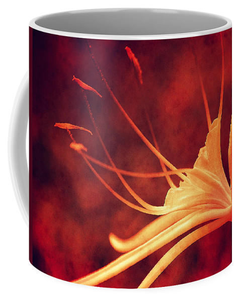 Lilly Coffee Mug featuring the photograph Red Lilly by Susanne Van Hulst