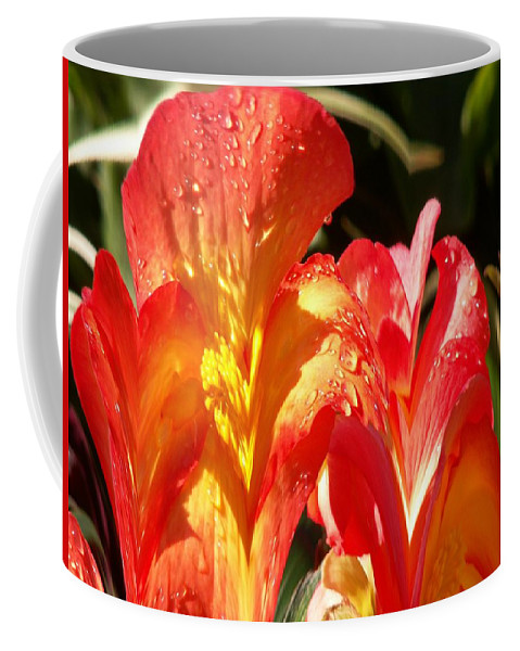 Flowers Coffee Mug featuring the photograph Red N Yellow Flowers 2 by Tim Allen