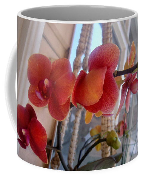 Red Orchid Coffee Mug featuring the photograph Red Orchid Flowers 01 by Sofia Metal Queen