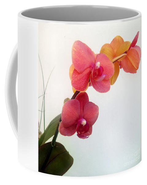 Red Orchid Coffee Mug featuring the photograph Red Pink Golden Orchid Flowers 03 by Sofia Metal Queen