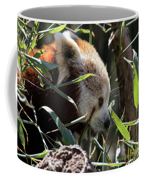 Panda Coffee Mug featuring the photograph Red Panda by ChelleAnne Paradis