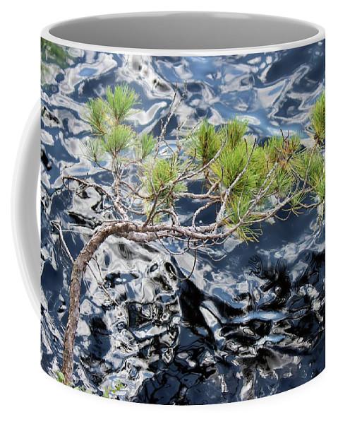 Pinus Resinosa Coffee Mug featuring the photograph Red Pine by David Pickett