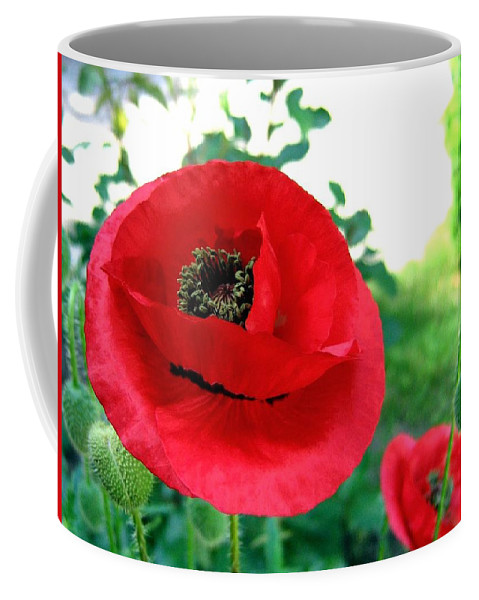 Poppies Coffee Mug featuring the photograph Red Poppies by Will Borden