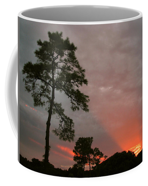Nature Coffee Mug featuring the photograph Red Rays by Peg Urban