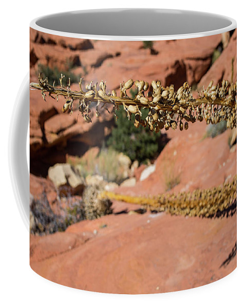 Red Rock Canyon Coffee Mug featuring the photograph Red Rock Canyon Nv 11 by Chris Brannen