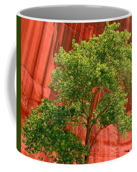 Tree Coffee Mug featuring the photograph Red Rock Green Tree by Joe Kozlowski