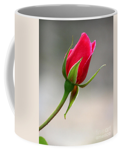 Red Rose Coffee Mug featuring the photograph Red Rose Simplicity by Melanie Rainey