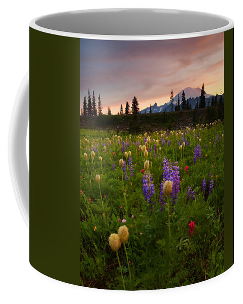 Anenome Coffee Mug featuring the photograph Red Sky Meadow by Mike Dawson