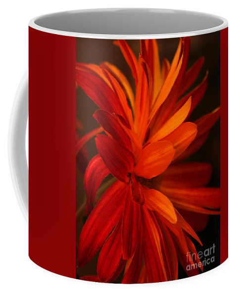 Flower Coffee Mug featuring the photograph Red Sunflower 1 by Melanie Rainey