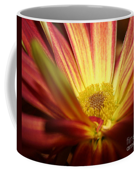 Sunflower Coffee Mug featuring the photograph Red Sunflower 3 by Melanie Rainey