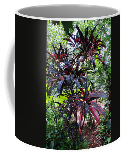 Red Coffee Mug featuring the photograph Red Trees by Rob Hans
