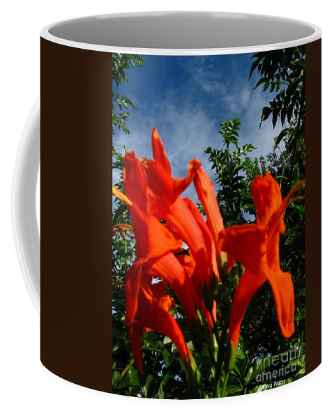 Patzer Coffee Mug featuring the photograph Red Trumpeter by Greg Patzer