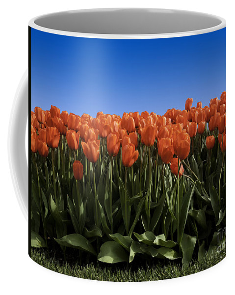 Garden Coffee Mug featuring the photograph Red Tulip Garden by Anthony Totah