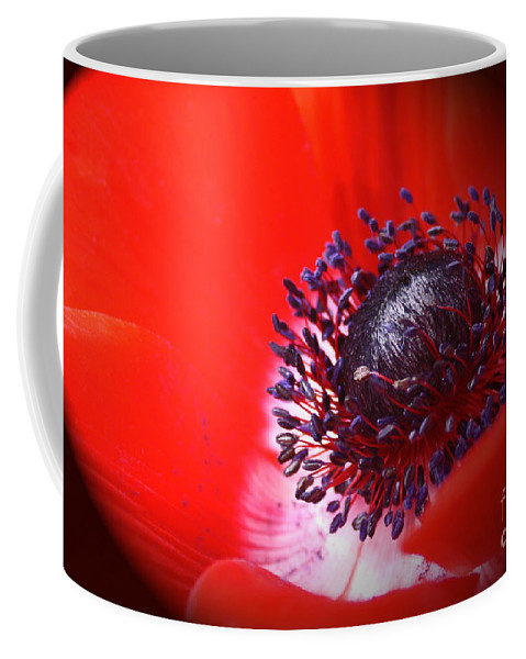 Wall Art Coffee Mug featuring the photograph Red Windflower by Kelly Holm