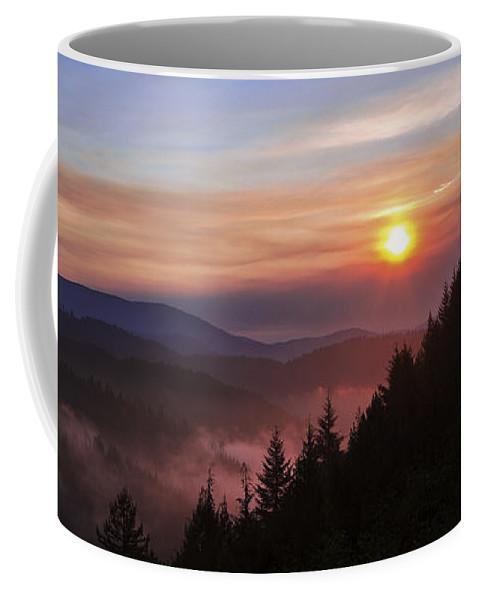 Redwood Sun Coffee Mug featuring the photograph Redwood Sun by Chad Dutson
