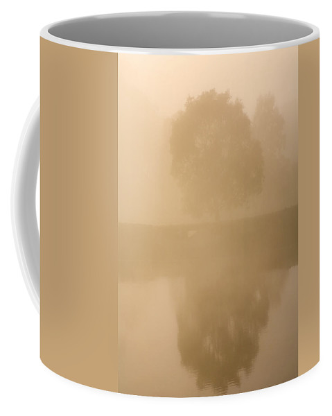 Reflection Coffee Mug featuring the photograph Reflected Gum Sunrise by Mike Dawson
