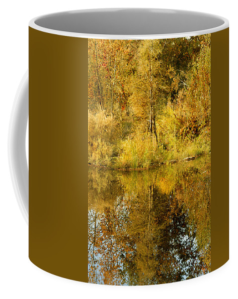 Autumn Coffee Mug featuring the photograph Reflecting On Autumn Leaves by Pamela Patch