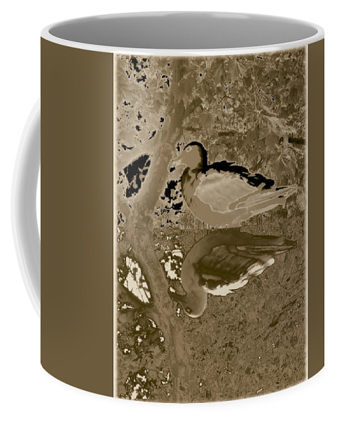 Sea Gull Coffee Mug featuring the photograph Reflecting by Tim Allen