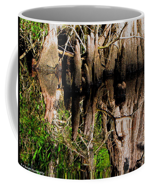 Cypress Knees Coffee Mug featuring the photograph Reflection Of Cypress Knees by Barbara Bowen