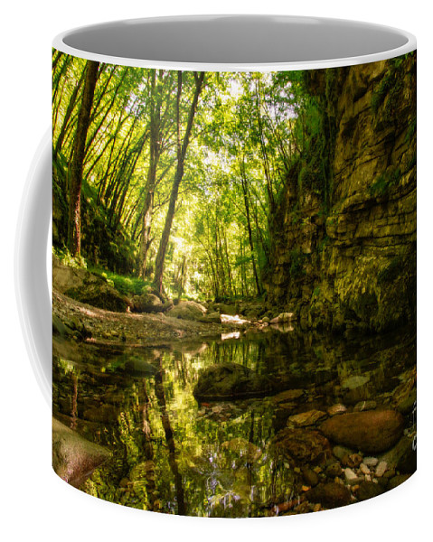 Nature Coffee Mug featuring the photograph Reflections In Rio Pelago by Mirko Chianucci