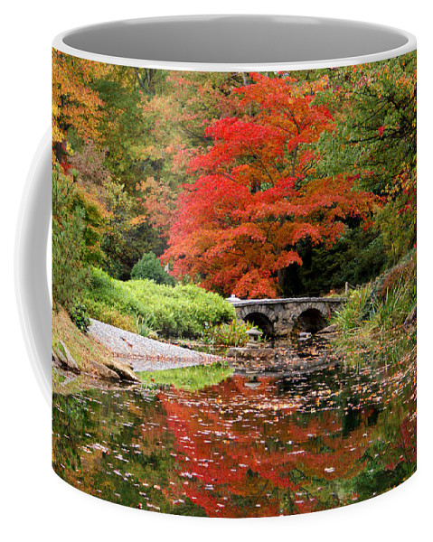 Fall Coffee Mug featuring the photograph Reflections Of Autumn by Jean Haynes
