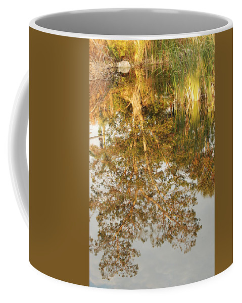 Sunsets Coffee Mug featuring the photograph Reflections Of Old Miss by Rob Hans