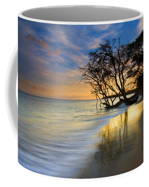 Waves Coffee Mug featuring the photograph Reflections Of Paradise by Mike Dawson