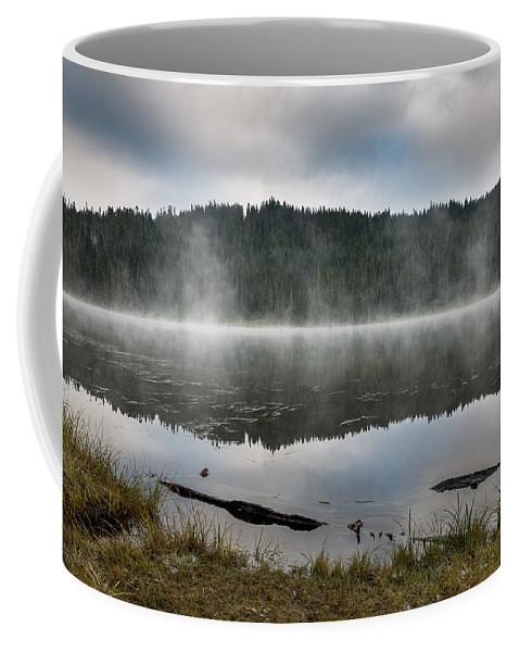 Reflection Lake Coffee Mug featuring the photograph Reflections On Reflection Lake 2 by Greg Nyquist
