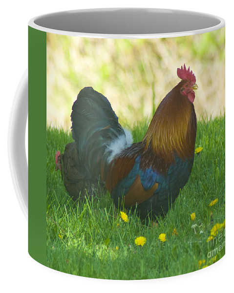 Rooster Coffee Mug featuring the photograph Regal Rooster by Louise Magno