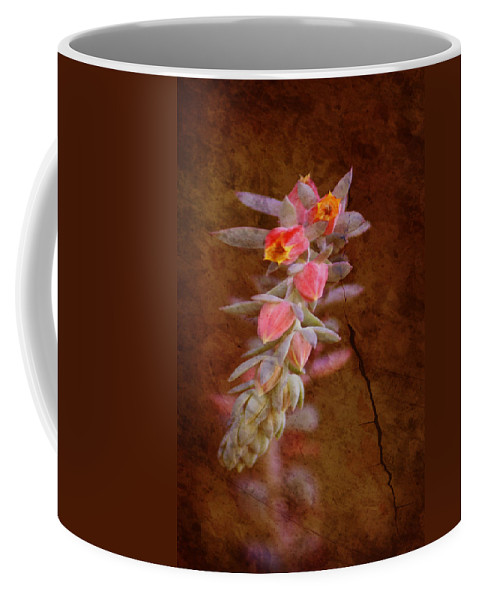 Flowers Coffee Mug featuring the photograph Regrowth by Holly Kempe