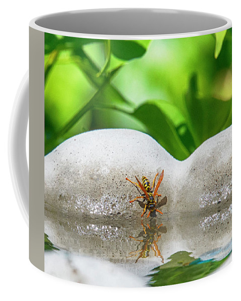 Yellow Jacket Coffee Mug featuring the photograph Reflected Little Stinger Taking A Sip 2 By Chris White by C H Apperson