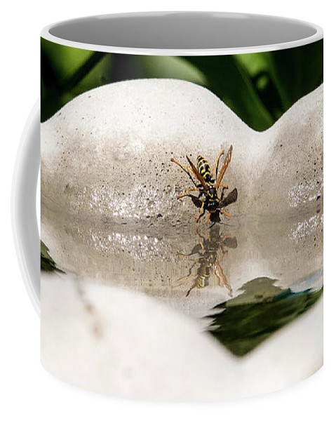Yellow Jacket Coffee Mug featuring the photograph Reflected Little Stinger Taking A Sip By Chris White by C H Apperson