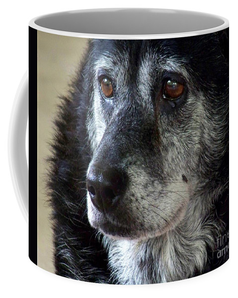 Dog Coffee Mug featuring the photograph Reminiscing by Jai Johnson