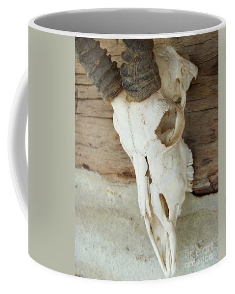 Remnants Coffee Mug featuring the photograph Remnants by Jai Johnson