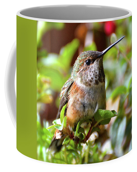 Oregon Coffee Mug featuring the photograph Rest by Cher Rydberg