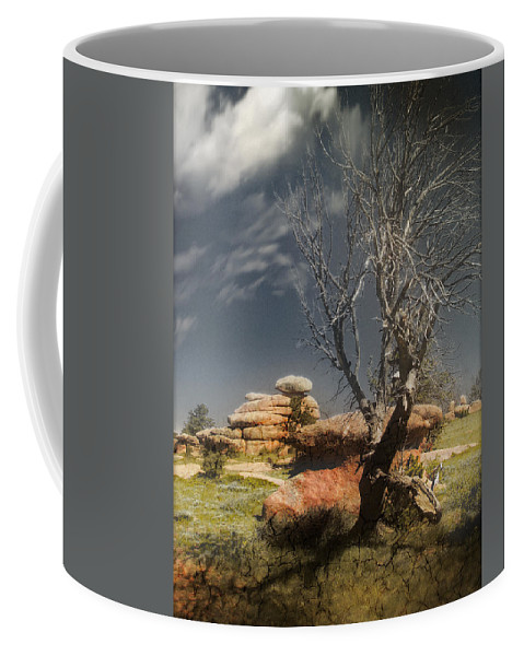 Trees Coffee Mug featuring the photograph Resting In Peace by John Anderson
