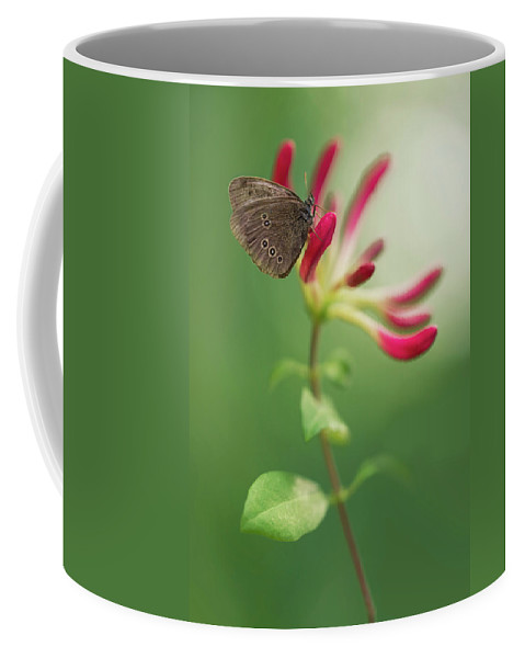 Lonicera Coffee Mug featuring the photograph Resting On The Pink Plant by Jaroslaw Blaminsky