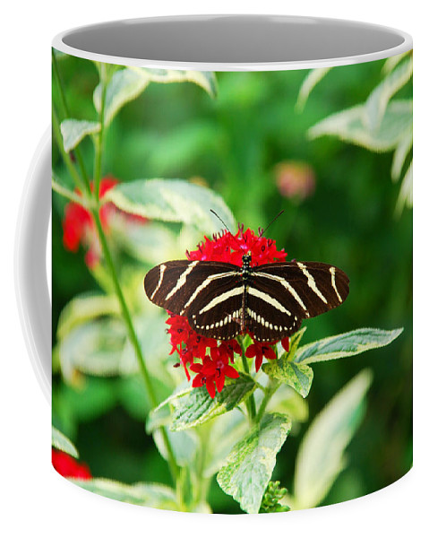 Butterfly Coffee Mug featuring the photograph Resting by Susanne Van Hulst