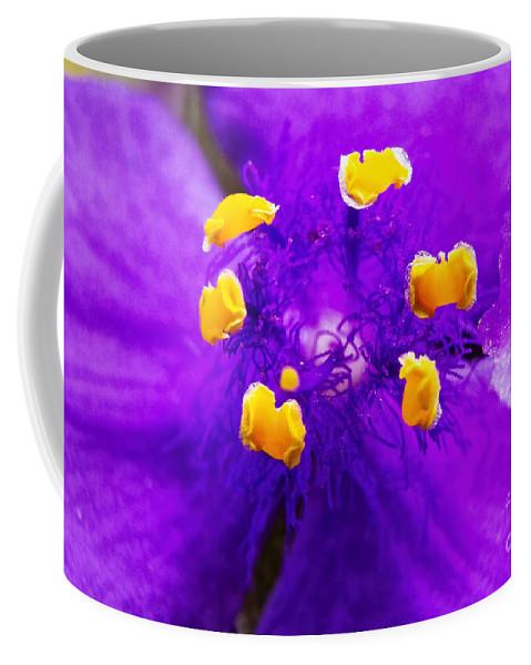 Revenge Of The Spiderwort Coffee Mug featuring the photograph Revenge Of The Spiderwort by Gary Holmes