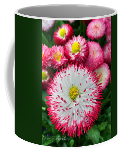 Flowers Coffee Mug featuring the photograph Rhineland-palatinate Greenhouse by Stephen Settles