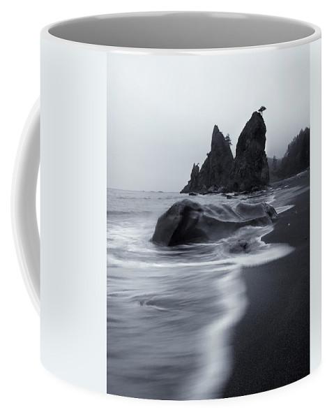 Beach Coffee Mug featuring the photograph Rialto View by Mike Dawson