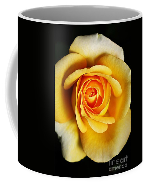 Rose Coffee Mug featuring the photograph Rich And Dreamy Yellow Rose  by Joy Watson