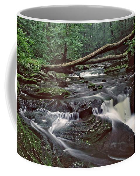 Ricketts Glen State Park Coffee Mug featuring the photograph Ricketts Glenn Falls 007 by Scott McAllister