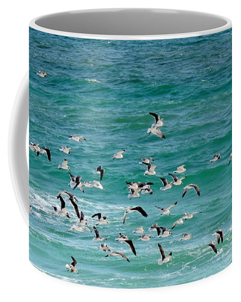 Fort Walton Beach Coffee Mug featuring the photograph Riding The Wind by Roe Rader